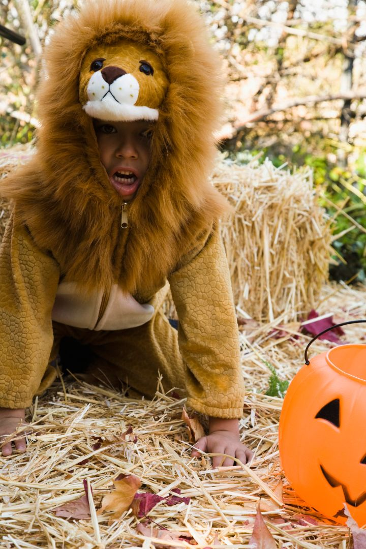 50 Halloween Costumes For Adults & Kids