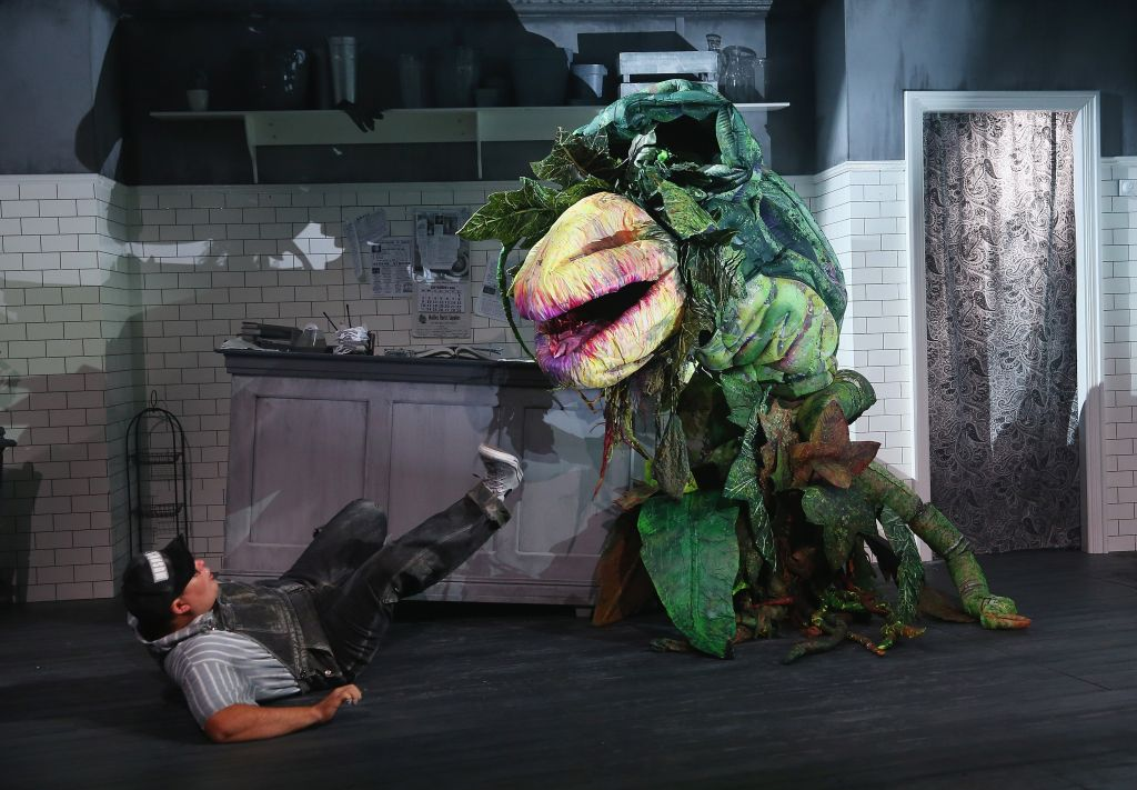 Little Shop Of Horrors Media Preview