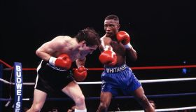 Greg Haugen And Pernell Whitaker Boxing At Coliseum